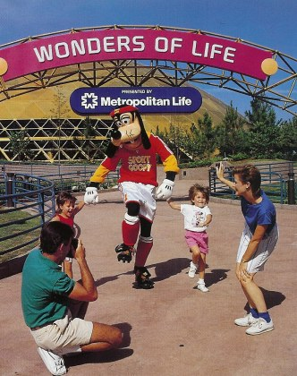Wonders of Life Goofy